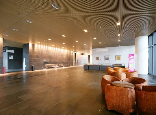 Wood Grain Aluminum Baffle Ceiling Tiles Decoration Xi'an Art Museum