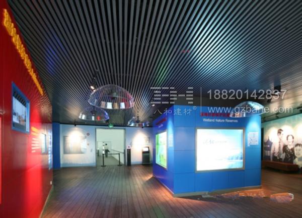 中国湿地博物馆木纹方通天花吊顶