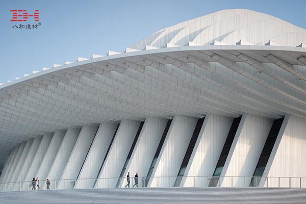 案例欣赏:型材铝方通、U型铝方通装饰广西文化艺术中心